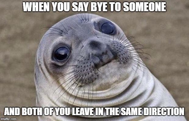 thats akward | WHEN YOU SAY BYE TO SOMEONE AND BOTH OF YOU LEAVE IN THE SAME DIRECTION | image tagged in memes,awkward moment sealion,ssby,funny | made w/ Imgflip meme maker