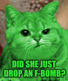 RayCat Annoyed | DID SHE JUST DROP AN F-BOMB? | image tagged in raycat annoyed | made w/ Imgflip meme maker