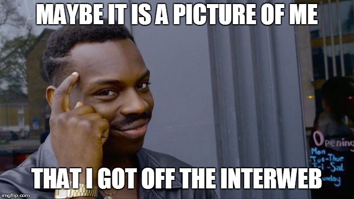 Roll Safe Think About It Meme | MAYBE IT IS A PICTURE OF ME THAT I GOT OFF THE INTERWEB | image tagged in memes,roll safe think about it | made w/ Imgflip meme maker