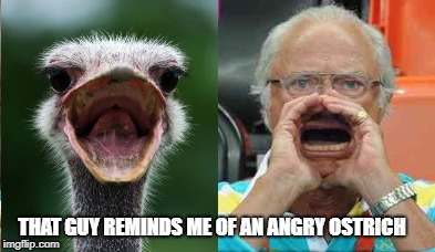 THAT GUY REMINDS ME OF AN ANGRY OSTRICH | made w/ Imgflip meme maker