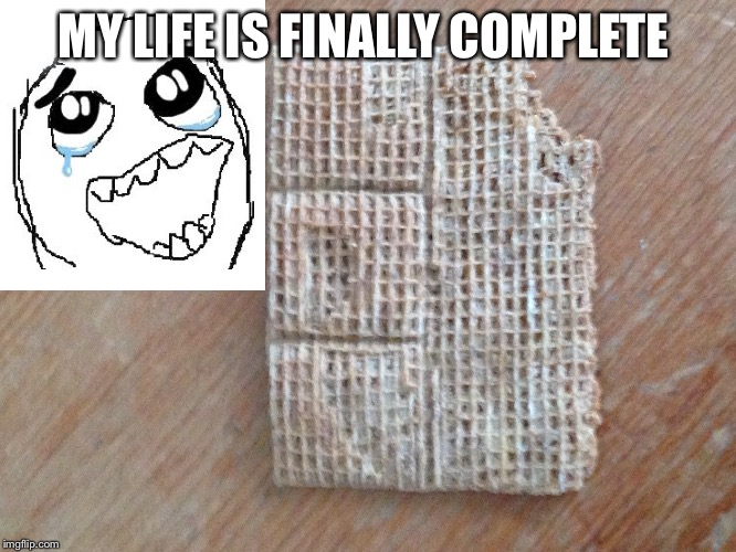 MY LIFE IS FINALLY COMPLETE | image tagged in omg | made w/ Imgflip meme maker