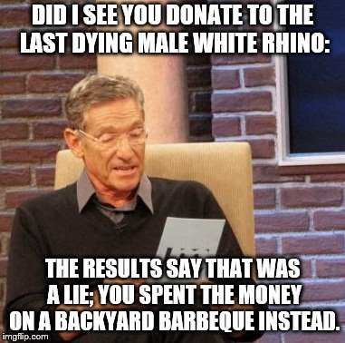 Maury Lie Detector Meme | DID I SEE YOU DONATE TO THE LAST DYING MALE WHITE RHINO: THE RESULTS SAY THAT WAS A LIE; YOU SPENT THE MONEY ON A BACKYARD BARBEQUE INSTEAD. | image tagged in memes,maury lie detector | made w/ Imgflip meme maker