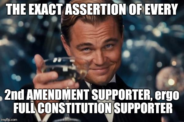 Leonardo Dicaprio Cheers Meme | THE EXACT ASSERTION OF EVERY 2nd AMENDMENT SUPPORTER, ergo FULL CONSTITUTION SUPPORTER | image tagged in memes,leonardo dicaprio cheers | made w/ Imgflip meme maker