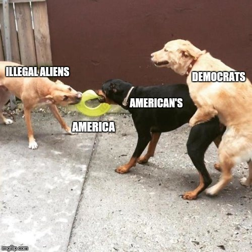 This Is My Life | ILLEGAL ALIENS AMERICA AMERICAN'S DEMOCRATS | image tagged in this is my life | made w/ Imgflip meme maker