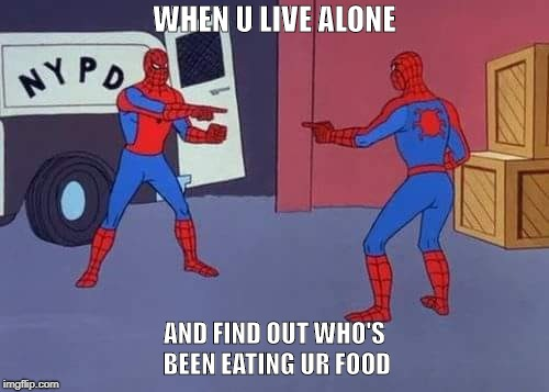 Caught | WHEN U LIVE ALONE AND FIND OUT WHO'S BEEN EATING UR FOOD | image tagged in spiderman mirror,food | made w/ Imgflip meme maker