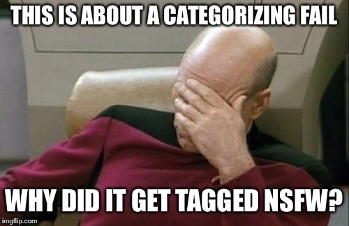 Captain Picard Facepalm Meme | THIS IS ABOUT A CATEGORIZING FAIL WHY DID IT GET TAGGED NSFW? | image tagged in memes,captain picard facepalm | made w/ Imgflip meme maker