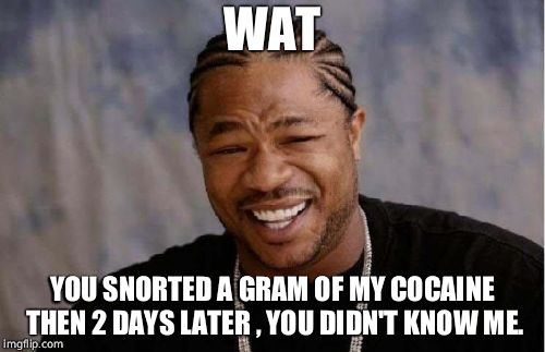 Yo Dawg Heard You Meme | WAT YOU SNORTED A GRAM OF MY COCAINE THEN 2 DAYS LATER , YOU DIDN'T KNOW ME. | image tagged in memes,yo dawg heard you | made w/ Imgflip meme maker