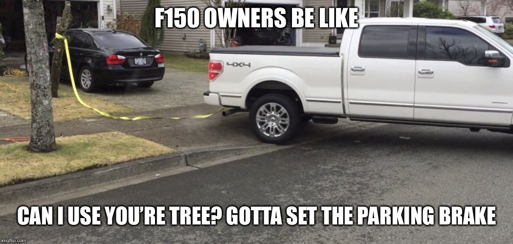 F150 OWNERS BE LIKE CAN I USE YOU'RE TREE? GOTTA SET THE PARKING BRAKE | image tagged in bling_bling | made w/ Imgflip meme maker