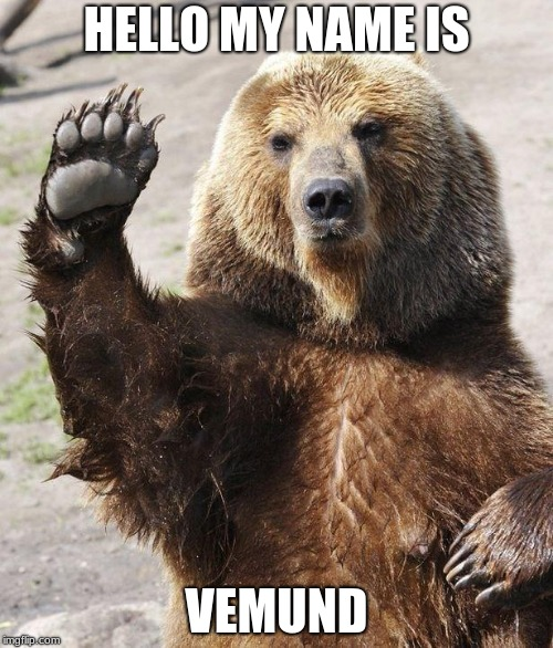 Hello bear | HELLO MY NAME IS VEMUND | image tagged in hello bear | made w/ Imgflip meme maker