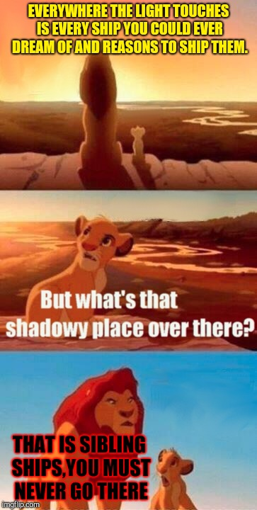 Simba Shadowy Place Meme | EVERYWHERE THE LIGHT TOUCHES IS EVERY SHIP YOU COULD EVER DREAM OF AND REASONS TO SHIP THEM. THAT IS SIBLING SHIPS,YOU MUST NEVER GO THERE | image tagged in memes,simba shadowy place | made w/ Imgflip meme maker