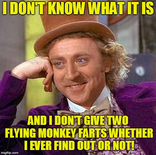Creepy Condescending Wonka Meme | I DON'T KNOW WHAT IT IS AND I DON'T GIVE TWO FLYING MONKEY FARTS WHETHER I EVER FIND OUT OR NOT! | image tagged in memes,creepy condescending wonka | made w/ Imgflip meme maker