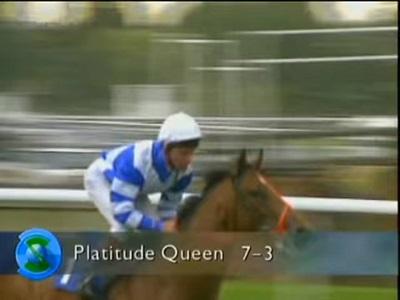 PLATITUDE QUEEN THE DAY TODAY ALAN PARTRIDGE HORSE RACING Blank