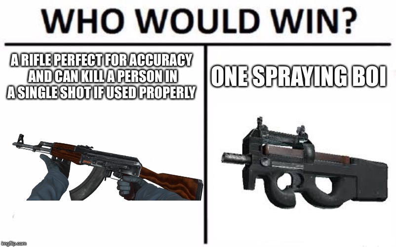 Who Would Win? Meme | A RIFLE PERFECT FOR ACCURACY AND CAN KILL A PERSON IN A SINGLE SHOT IF USED PROPERLY ONE SPRAYING BOI | image tagged in memes,who would win | made w/ Imgflip meme maker