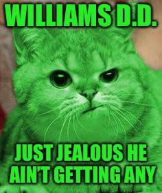 RayCat Annoyed | WILLIAMS D.D. JUST JEALOUS HE AIN'T GETTING ANY | image tagged in raycat annoyed | made w/ Imgflip meme maker