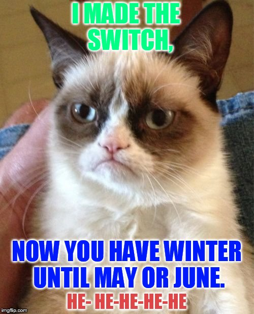 Grumpy Cat Meme | I MADE THE  SWITCH, NOW YOU HAVE WINTER UNTIL MAY OR JUNE. HE- HE-HE-HE-HE | image tagged in memes,grumpy cat | made w/ Imgflip meme maker