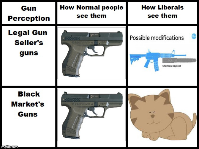 Gun Perception | image tagged in gun perception,anti-gun idiots,hogg,liberal retards,ban all the things | made w/ Imgflip meme maker