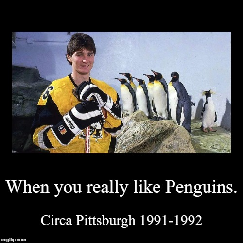 When you really like Penguins. | Circa Pittsburgh 1991-1992 | image tagged in funny,demotivationals | made w/ Imgflip demotivational maker