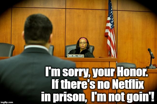 I'm sorry, your Honor. If there's no Netflix in prison,  I'm not goin'! | made w/ Imgflip meme maker