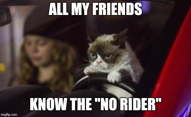 "Grumpy Cat Driving | ALL MY FRIENDS KNOW THE ""NO RIDER"" 