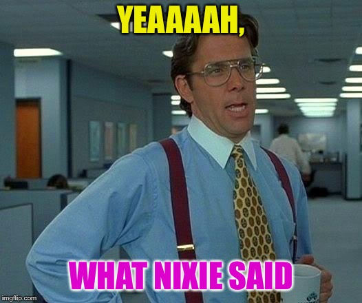 That Would Be Great Meme | YEAAAAH, WHAT NIXIE SAID | image tagged in memes,that would be great | made w/ Imgflip meme maker