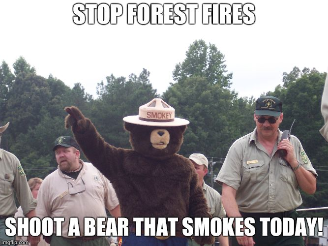STOP FOREST FIRES SHOOT A BEAR THAT SMOKES TODAY! | made w/ Imgflip meme maker