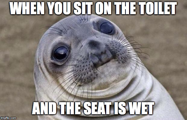 Awkward Moment Sealion Meme | WHEN YOU SIT ON THE TOILET AND THE SEAT IS WET | image tagged in memes,awkward moment sealion | made w/ Imgflip meme maker