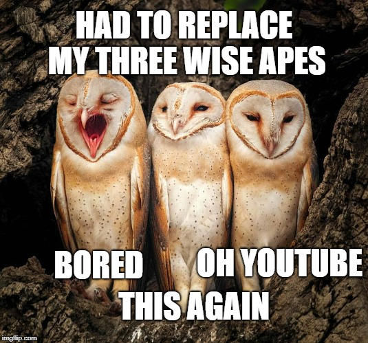 Internet Owls | OH YOUTUBE BORED THIS AGAIN HAD TO REPLACE MY THREE WISE APES | image tagged in owls | made w/ Imgflip meme maker