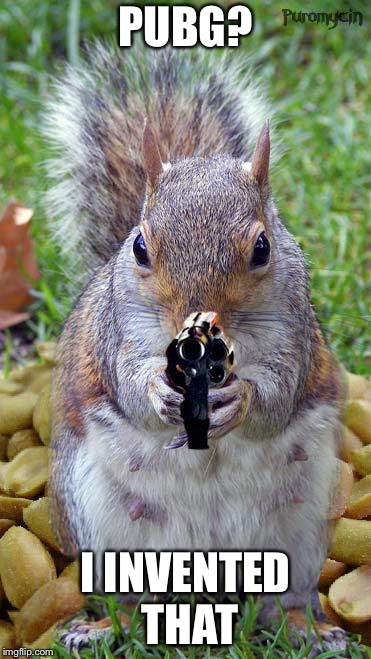 funny squirrels with guns (5) | PUBG? I INVENTED THAT | image tagged in funny squirrels with guns 5 | made w/ Imgflip meme maker