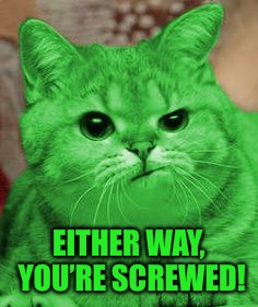 RayCat Annoyed | EITHER WAY, YOU'RE SCREWED! | image tagged in raycat annoyed | made w/ Imgflip meme maker