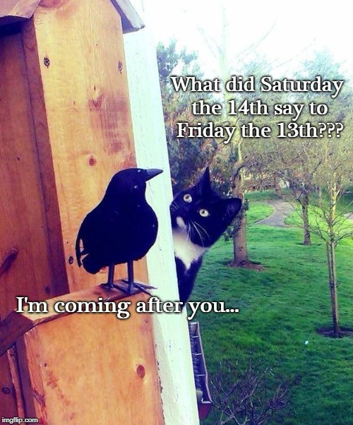 I'm after you... | What did Saturday the 14th say to Friday the 13th??? I'm coming after you... | image tagged in what,saturday,friday,after you | made w/ Imgflip meme maker