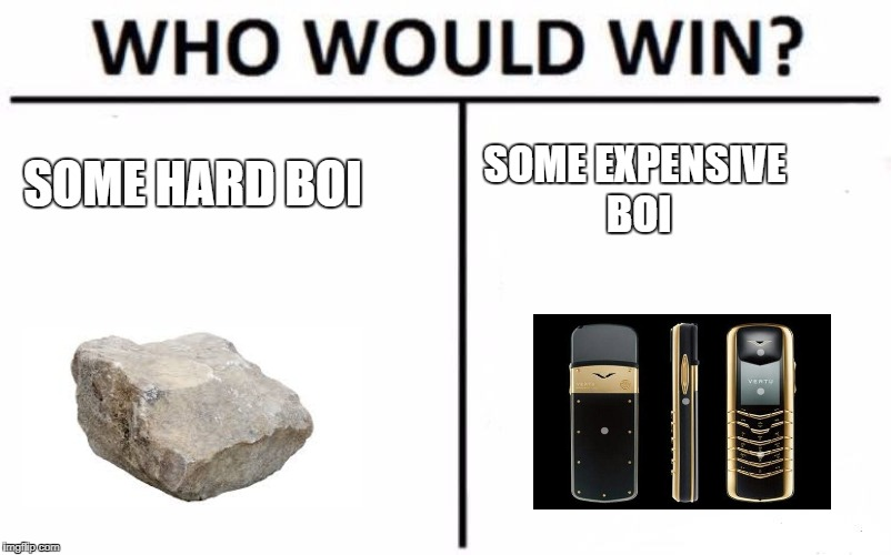 Who Would Win? Meme | SOME HARD BOI SOME EXPENSIVE BOI | image tagged in memes,who would win | made w/ Imgflip meme maker