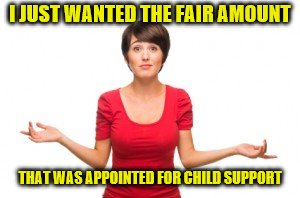 I JUST WANTED THE FAIR AMOUNT THAT WAS APPOINTED FOR CHILD SUPPORT | made w/ Imgflip meme maker
