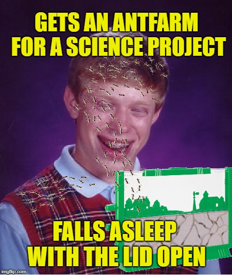 Bad Luck Brian | GETS AN ANTFARM FOR A SCIENCE PROJECT FALLS ASLEEP WITH THE LID OPEN | image tagged in funny memes,bad luck brian,ants,science,sleeping | made w/ Imgflip meme maker