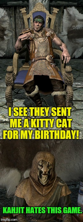 Awww, nice kitty  | I SEE THEY SENT ME A KITTY CAT FOR MY BIRTHDAY! KAHJIT HATES THIS GAME. | image tagged in skyrim | made w/ Imgflip meme maker