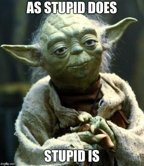Star Wars Yoda Meme | AS STUPID DOES STUPID IS | image tagged in memes,star wars yoda | made w/ Imgflip meme maker