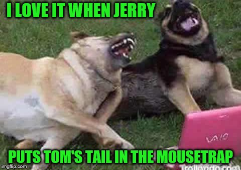 Binge watching vintage cartoons together, some things never get old.  | I LOVE IT WHEN JERRY PUTS TOM'S TAIL IN THE MOUSETRAP | image tagged in memes,dogs,cartoons,tom and jerry,laughing | made w/ Imgflip meme maker