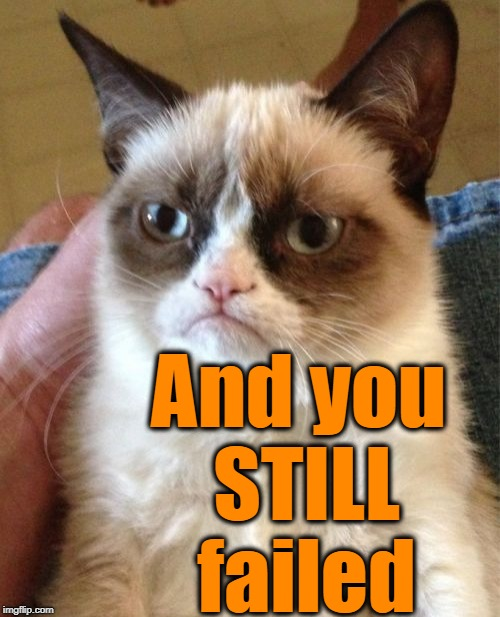 Grumpy Cat Meme | And you STILL failed | image tagged in memes,grumpy cat | made w/ Imgflip meme maker