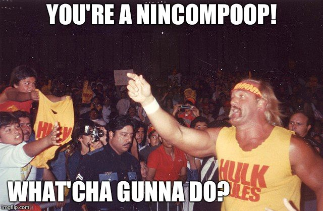 YOU'RE A NINCOMPOOP! WHAT'CHA GUNNA DO? | made w/ Imgflip meme maker