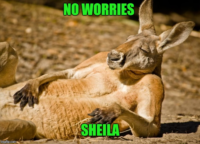 Relaxed dude | NO WORRIES SHEILA | image tagged in relaxed dude | made w/ Imgflip meme maker