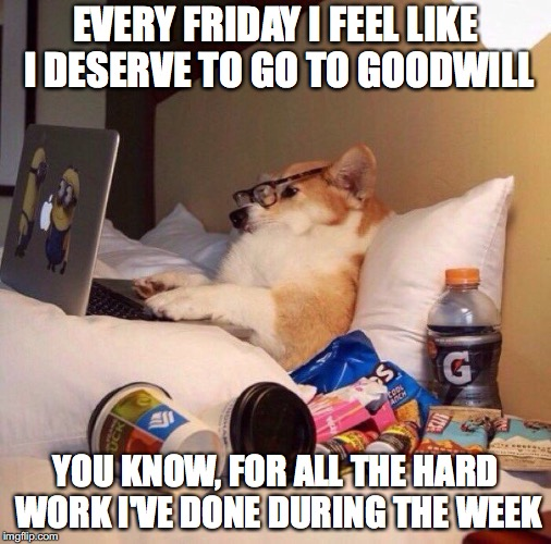 EVERY FRIDAY I FEEL LIKE I DESERVE TO GO TO GOODWILL YOU KNOW, FOR ALL THE HARD WORK I'VE DONE DURING THE WEEK | image tagged in lazy dog in bed | made w/ Imgflip meme maker