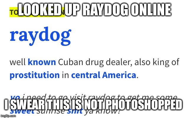 LOOKED UP RAYDOG ONLINE I SWEAR THIS IS NOT PHOTOSHOPPED | image tagged in raydog | made w/ Imgflip meme maker