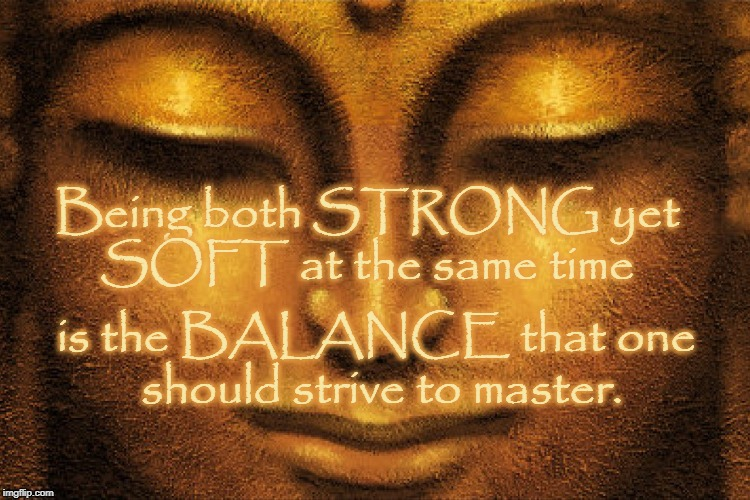 Strong yet Soft = BALANCE | is the BALANCE that one should strive to master. Being both STRONG yet SOFT at the same time | image tagged in strong,soft,balance | made w/ Imgflip meme maker