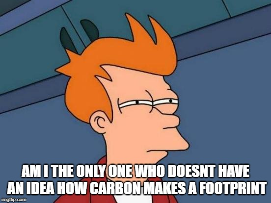 Futurama Fry Meme | AM I THE ONLY ONE WHO DOESNT HAVE AN IDEA HOW CARBON MAKES A FOOTPRINT | image tagged in memes,futurama fry | made w/ Imgflip meme maker