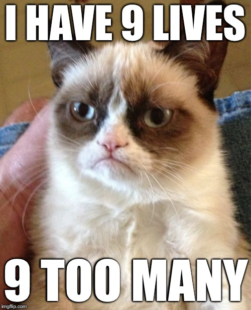 9 Lives | I HAVE 9 LIVES 9 TOO MANY | image tagged in memes,grumpy cat | made w/ Imgflip meme maker