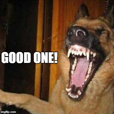 Laughing Dog | GOOD ONE! | image tagged in laughing dog | made w/ Imgflip meme maker