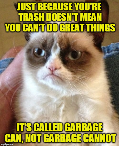 Here's a Sack of Inspiration for You | JUST BECAUSE YOU'RE TRASH DOESN'T MEAN YOU CAN'T DO GREAT THINGS IT'S CALLED GARBAGE CAN, NOT GARBAGE CANNOT | image tagged in memes,grumpy cat | made w/ Imgflip meme maker