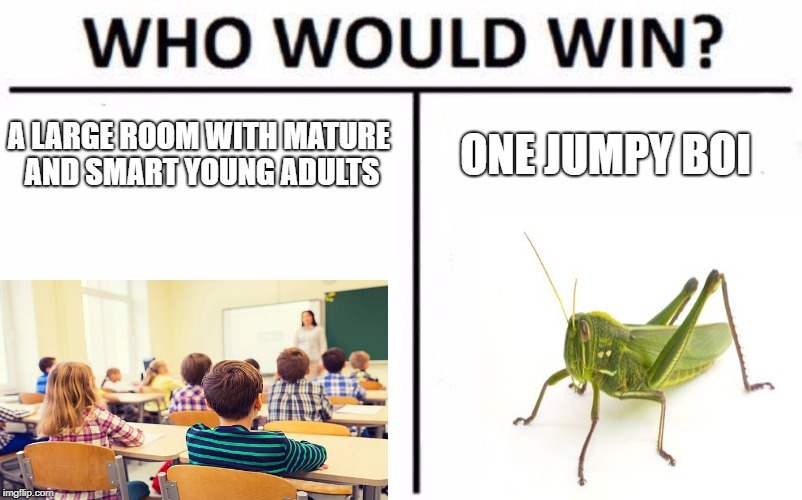 Who Would Win? Meme | A LARGE ROOM WITH MATURE AND SMART YOUNG ADULTS ONE JUMPY BOI | image tagged in memes,who would win | made w/ Imgflip meme maker
