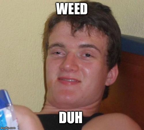 10 Guy Meme | WEED DUH | image tagged in memes,10 guy | made w/ Imgflip meme maker