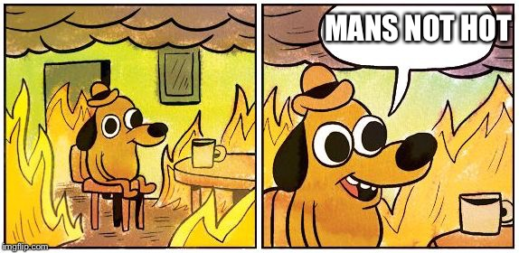 This is Fine (Blank) | MANS NOT HOT | image tagged in this is fine blank,big shaq,mans not hot | made w/ Imgflip meme maker