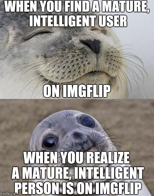 Oh, nice! Hey! What are you doing here? What am I doing here?  What is... |  WHEN YOU FIND A MATURE, INTELLIGENT USER; ON IMGFLIP; WHEN YOU REALIZE A MATURE, INTELLIGENT PERSON IS ON IMGFLIP | image tagged in memes,short satisfaction vs truth | made w/ Imgflip meme maker